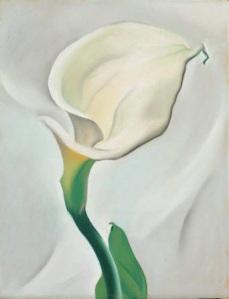 Lily. Georgia O'Keeffe