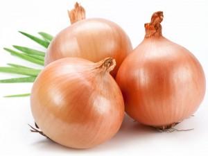 onions-300x225