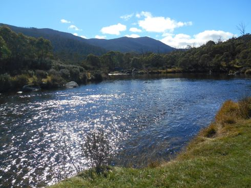 Thredbo River
