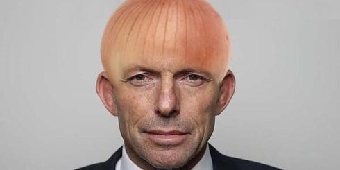 Abbott Onion Meme